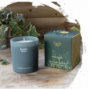 Herb Dublin Buttercup Baby Boxed Candle